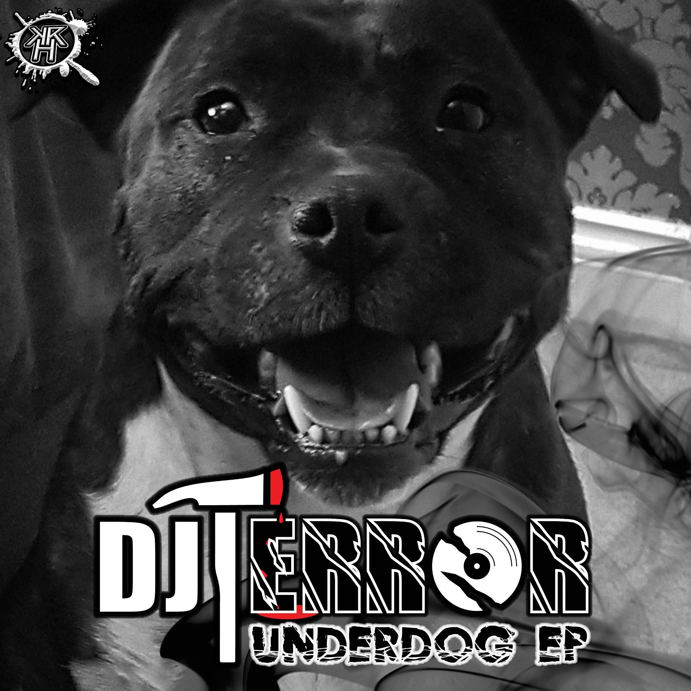 Download anthem for the underdog.
